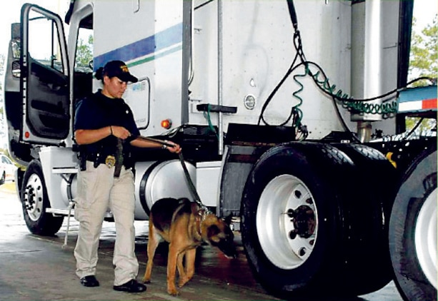 Cpl. Tonette Gezzi, civilian K-9 handler, Marine Corps Police Department, MCLB Albany, and her K-9 partner inspects a truck, recently.