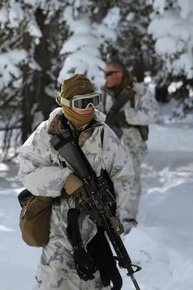 Private first class Michael Humer (front) and Lance Cpl. Ryan Albanese, keep a sharp eye out for the enemy during a patrol during the final six-day field exercise for Mountain Exercise winter training package at MCMWTC Bridgeport, Calif., Feb. 3, 2014. Humer is an Assaultman and Miami native and Albanese is a fire team leader and Barnegat, N.J., native, both Marines serve with Easy Company, 2nd Battalion, 2nd Marine Regiment, 2nd Marine Division. The Warlords and its attached units underwent the winter training package at MCMWTC to prepare for the upcoming a multi-lateral joint and combined exercise Cold Response, which will take place in March of 2014 in Norway.