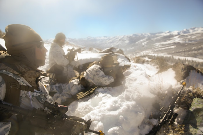 Petty Officer 3rd Class Michael Fallone, a hospital corpsman with Easy Company, 2nd Battalion, 2nd Marine Regiment, 2nd Marine Division and Trenton, Ohio native provides over watch with two Marines during an assault on an enemy position during the final six-day field exercise for Mountain Exercise winter training package at MCMWTC Bridgeport, Calif., Feb. 2, 2014. The Warlords and its attached units underwent the winter training package at MCMWTC to prepare for the upcoming a multi-lateral joint and combined exercise Cold Response, which will take place in March of 2014 in Norway.