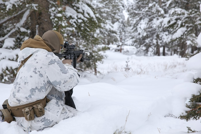 A Marine with Easy Company, 2nd Battalion, 2nd Marine Regiment, 2nd Marine Division provides over watch observes a potential threat during the final six-day field exercise for Mountain Exercise winter training package at MCMWTC Bridgeport, Calif., Feb. 2, 2014. The Warlords and its attached units underwent the winter training package at MCMWTC to prepare for the upcoming a multi-lateral joint and combined exercise Cold Response, which will take place in March of 2014 in Norway.