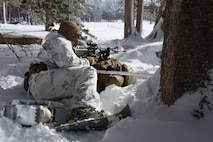 A Marine from Golf Company, 2nd Battalion, 2nd Marine Regiment, 2nd Marine Division provides over watch against a potential threat during the final six-day field exercise for Mountain Exercise winter training package at MCMWTC Bridgeport, Calif., Jan. 31, 2014. The Warlords and its attached units underwent the winter training package at MCMWTC to prepare for the upcoming a multi-lateral joint and combined exercise Cold Response, which will take place in March of 2014 in Norway.