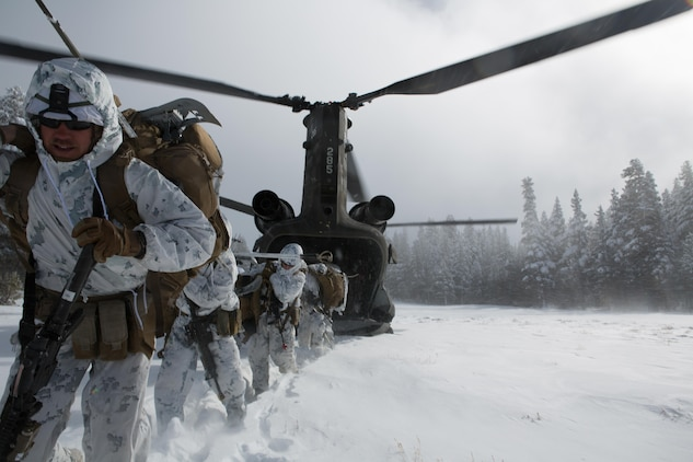 Marines from Golf Company, 2nd Battalion, 2nd Marine Regiment, 2nd Marine Division assault a high elevation landing zone from a CH-47 helicopter, for the final six-day field exercise for Mountain Exercise winter training package at MCMWTC Bridgeport, Calif., Jan. 31, 2014. The Warlords and its attached units underwent the winter training package at MCMWTC to prepare for the upcoming a multi-lateral joint and combined exercise Cold Response, which will take place in March of 2014 in Norway.