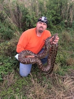 Ruben Ramirez, founder of Florida Python Hunters and winner of two prizes in the 2013 Python Challenge, shows off his latest catch to Donna Zoeller, who had just completed a site visit nearby.