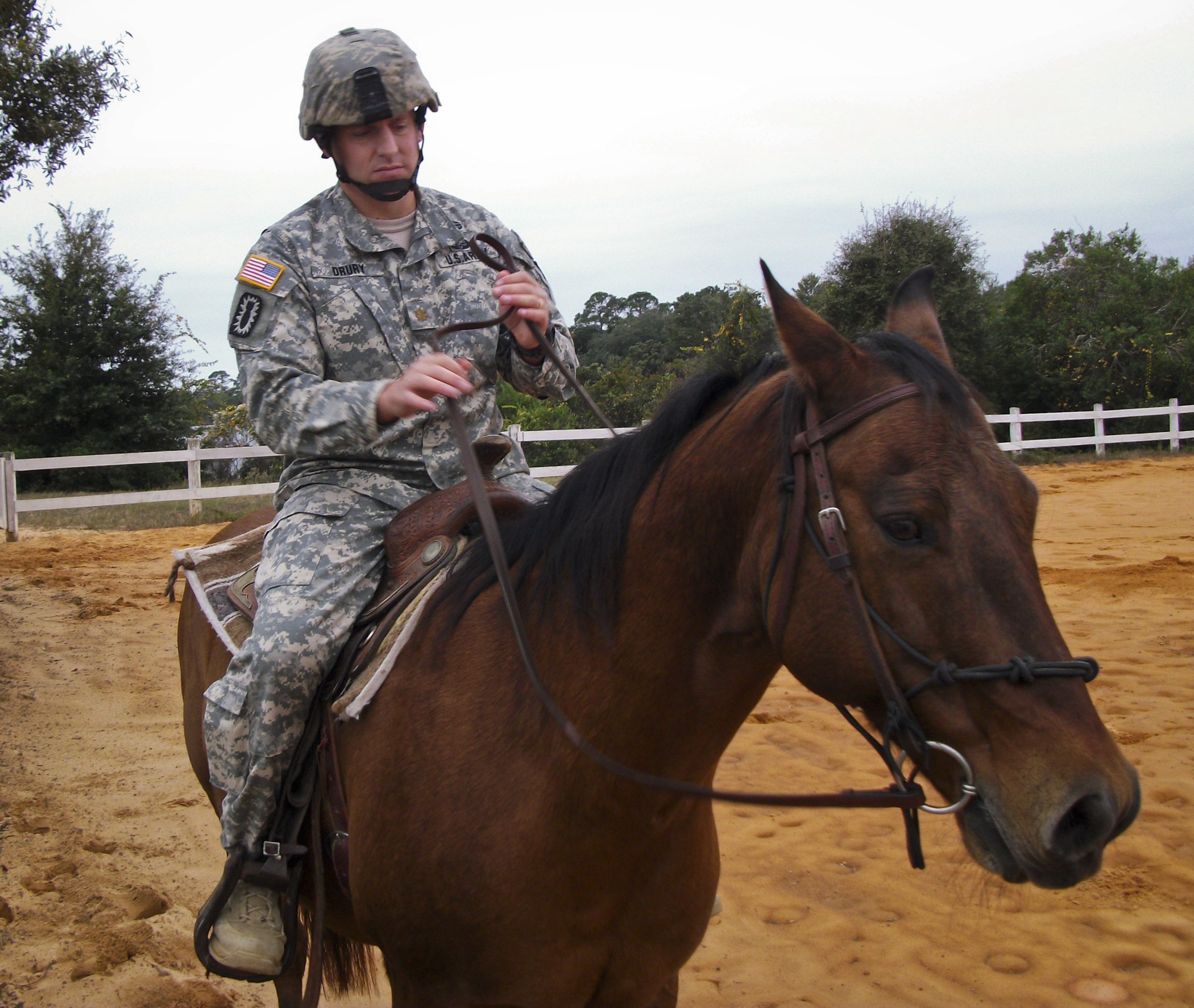 Riding Club Helps Train Soldiers Gt Eglin Air Force Base