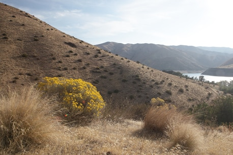 Overlooking the boat-in areas  of Deer Flat and Placer Point from a hillside above Lucky Peak Lake.