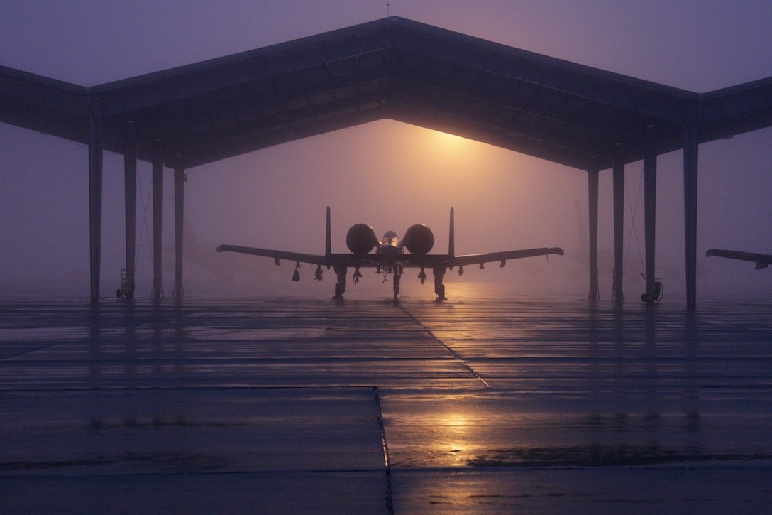 An A-10 Thunderbolt II from the 127th Wing is parked beneath a shelter on a foggy morning Jan. 11, 2014, at Selfridge Air National Guard Base, Mich. Selfridge Air National Guard Base has been used as a military air field since 1917. (U.S. Air National Guard photo/Tech. Sgt. Robert Hanet)