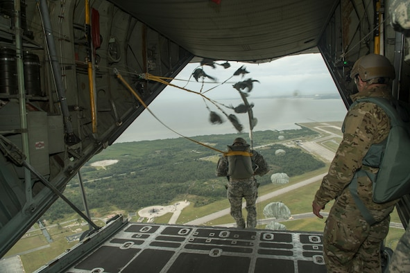 Paratroopers from the U.S. Army, Navy, Maries, and Air Force perform a static line jump from a C-130H2 aircraft belonging to the 136th Airlift Wing, Texas Air National Guard during a joint airborne air transportability training at McDill AFB, Fla., Nov. 15, 2013. The paratroopers jumped from 1,000 feet above ground level. . (Air National Guard photo by Senior Master Sgt. Elizabeth Gilbert/released)