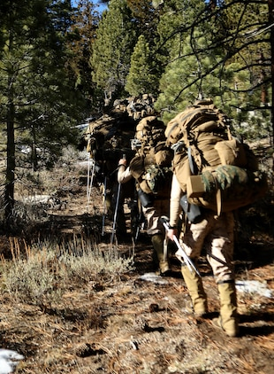 Marines with 2nd Battalion, 2nd Marine Regiment, 2nd Marine Division, set off on a grueling hike, with 90 pound packs, at the Marine Corps Mountain Warfare Training Center in Bridgeport, Calif. To gain an expeditionary mindset the Marines and Sailors of 2nd Battalion, 2nd Marines and Ragnarok Co., 2nd Marine Logistics Company, conducted a 10-day field exercise, which consisted of long range day and night foot movement through extremely rugged terrain with drastic elevation changes and tested the Marines' endurance.