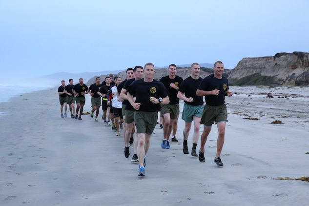 U.S. Marines from 1st Air Naval Gunfire Liaison Company and soldiers from the Japan Ground Self-Defense Force run along the beach during Exercise Iron Fist 2014 aboard Camp Pendleton, Calif., Jan. 24, 2014. Iron Fist 2014 is an amphibious exercise that brings together Marines and sailors from the 15th Marine Expeditionary Unit, other I Marine Expeditionary Force units, and soldiers from the JGSDF, to promote military interoperability and hone individual and small-unit skills through challenging, complex and realistic training. (U.S. Marine Corps photo by Lance Cpl. Anna K. Albrecht/Released)