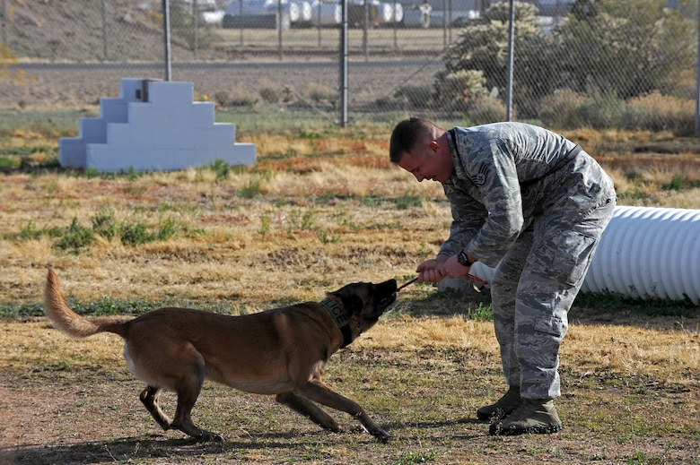 U.S. Air Force Staff Sgt. Sean McKenna, 355th Security Forces Squadron Military Working Dog handler, bonds with Mushe, 355th SFS MWD, during obedience training at Davis-Monthan Air Force Base, Ariz., Jan. 23, 2014. Due to their upcoming joint deployment, McKenna and Mushe are training together to strengthen the trust in their relationship. (U.S. Air Force photo by Senior Airman Camilla Elizeu/Released)