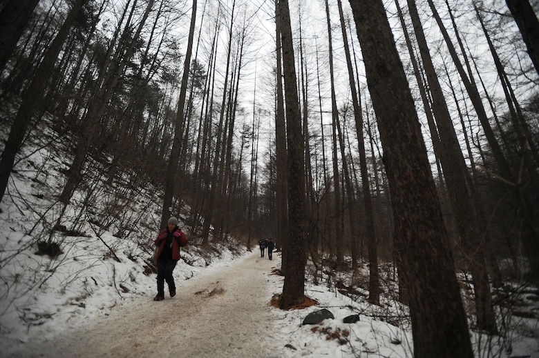 There are several hiking trails in Taebaek Provincial  Park, pictured here Jan. 25, 2014, in Taebaek, Republic of Korea. Most trails are approximately four kilometers in distance in kilometers and take at least a couple of hours to traverse. (U.S. Air Force photo by Staff Sgt. Jake Barreiro)