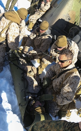 Marine Corps Mountain Warfare Training Center, Bridgeport, Calif. – A Navy corpsman from 2nd Battalion, 2nd Marine Regiment, 2nd Marine Division, directs the care of a simulated casualty during casualty evacuation drills at the Marine Corps Mountain Warfare Training Center at Bridgeport, Calif. The Marines began their pre-environmental training and basic mobility training during a 10-day field exercise on January 18, 2014. During the training evolution the Marines will learn skiing, snowshoeing, skijoring, limited cliff assault, endurance at elevation and long-range day and night movements. The Warlords and its attached units are undergoing training at MCMWTC to prepare for the upcoming bilateral NATO training exercise Cold Response, which will take place in March of 2014 in Norway.