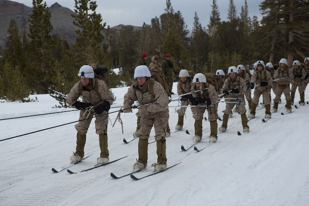Marine Corps Mountain Warfare Training Center, Bridgeport, Calif. – Marines from 2nd Battalion, 2nd Marine Regiment, 2nd Marine Division, learn skijoring at the Marine Corps Mountain Warfare Training Center at Bridgeport, Calif. Skijoring is skiing while being towed by animal or motorized vehicle. The Marines began their pre-environmental training and basic mobility training during a 10-day field exercise on January 18, 2014. During the training evolution the Marines will learn skiing, snowshoeing, skijoring, limited cliff assault, endurance at elevation and long-range day and night movements. The Warlords and its attached units are undergoing training at MCMWTC to prepare for the upcoming bilateral NATO training exercise Cold Response, which will take place in March of 2014 in Norway.