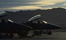 F-15E Strike Eagles from Mountain Home Air Force Base, Idaho, are parked on the flight line Jan. 28, 2014, at Nellis Air Force Base, Nev. Twelve aircraft along with more than 150 personnel are currently on temporary duty assignment at Nellis AFB, while participating in the multinational combat exercise Red Flag 14-1. (U.S. Air Force photo/Senior Airman Benjamin Sutton)