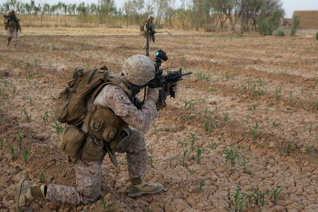 Sergeant Chris Pate, squad leader, Bravo Company, 1st Battalion, 7th Marine Regiment, scans the surrounding area with his rifle optic during a mission in Helmand province, Afghanistan, July 4, 2014. Pate, a native of Beaufort, S.C., and the company operated in Gereshk for three days and were involved in numerous kinetic engagements with Taliban insurgents.