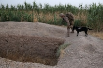 Lance Corporal Daniel Buzalsky, improvised explosive device detection dog handler, Bravo Company, 1st Battalion, 7th Marine Regiment, inspects an empty well with his IED detection dog, Macon, during a mission in Helmand province, Afghanistan, July 4, 2014. Buzalsky, a native of Vancouver, Wash., and the company operated in Gereshk for three days and were involved in numerous kinetic engagements with Taliban insurgents. (U.S. Marine Corps photo by Cpl. Joseph Scanlan / released)