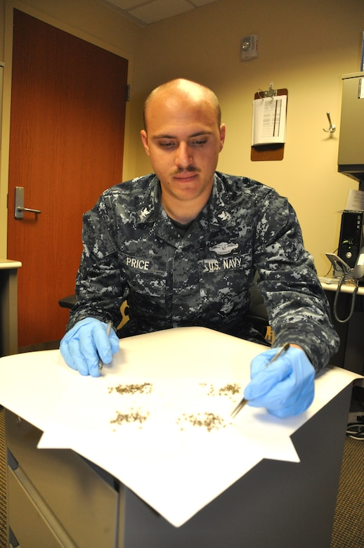Petty Officer 3rd Class Kyle Price, Naval Health Clinic Charleston preventive medicine technician, counts and identifies mosquito specimens recently collected from one of five mosquito surveillance traps at Joint Base Charleston. NHCC preventative medicine technicians provide surveillance for five areas throughout the Weapons Station, setting up Center of Disease Control light traps that lure and capture mosquitos so they can be counted, deciphered according to species and sex, and sent to labs to be tested. Naval Weapons Station Charleston.  (U.S. Navy photo/ Kris Patterson)