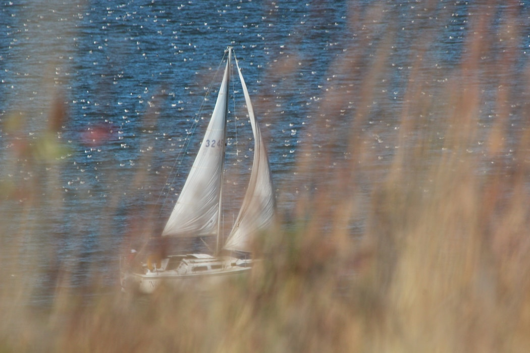 A sailor is enjoying a beautiful day on Lewis and Clark Lake.
