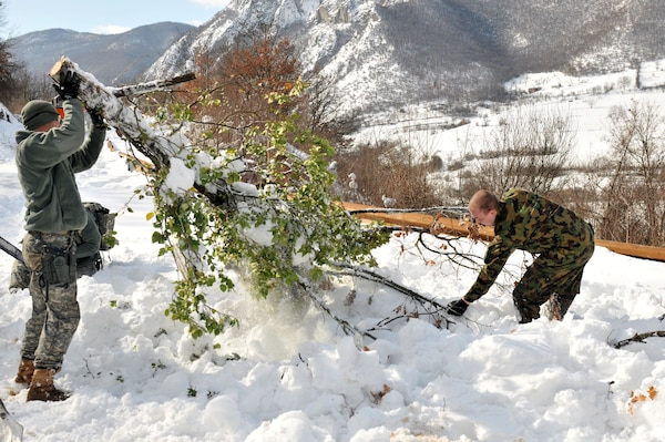 U.S. Army Spc. Ronald Williams, an infantryman from the Georgia Army National Guard's 3rd Squadron, 108th Cavalry Regiment, helps remove a tree from a roadblock near Jaringe, Kosovo, Feb. 17, 2012.