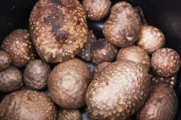 Invasive Air Potatoes