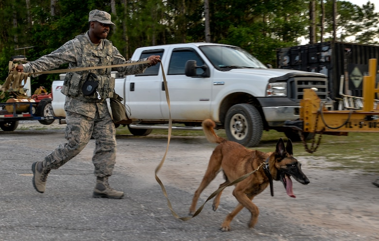 Staff Sgt. Corey Rainge, 1st Special Operations Security Forces Squadron military working dog handler, is led by his companion on Hurlburt Field, Fla., May 26, 2014. The team has recently completed certification before the 1st SOSFS commander. (U.S. Air Force photo/Senior Airman Christopher Callaway)