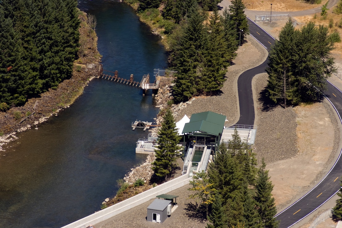 Cougar Adult Fish Collection Facility