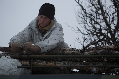 A Marine with Company G, 2nd Battalion, 2nd Marine Regiment, 2nd Marine Division secures cut down tree tunks to a Bandvagn 206 to use for traction if the vehicle gets stuck. Marines and Norwegian soldiers spent three days learning to work together and how to operate in the Norwegian winter environment to prepare the Marines and soldiers for Exercise Cold Response, which is a multinational and multilateral training exercise. The exercise will feature various types of military training including maritime, land and air operations. The location, above the Arctic Circle in northern Norway, provides a unique cold-weather environment for all forces involved to learn and develop procedures from one another.
