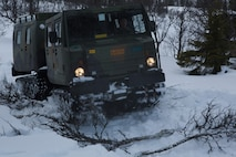 A Bandvagn 206 drives over trees to provide traction over difficult terrain where it could have gotten stuck. Marines and Norwegian soldiers spent three days learning to work together and how to operate in the Norwegian winter environment to prepare the Marines and soldiers for Exercise Cold Response, which is a multinational and multilateral training exercise. The exercise will feature various types of military training including maritime, land and air operations. The location, above the Arctic Circle in northern Norway, provides a unique cold-weather environment for all forces involved to learn and develop procedures from one another.