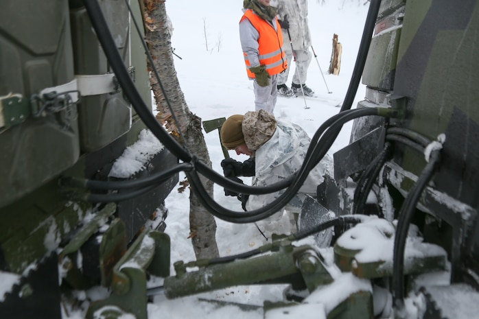 Giskaas, Norway – Sergeant Michael Hall, a platoon leader with Golf Company, 2nd Battalion, 2nd Marine Regiment, 2nd Marine Division and Sharptown, Md., native cuts down a tree that blocked the route of a Bandvagn 206 during a pre-environmental training field exercise to prepare them for exercise Cold Response 2014. Marines and Norwegian soldiers spent three days learning to work together and how to operate in the Norwegian winter environment to prepare the Marines and soldiers for Exercise Cold Response, which is a multinational and multilateral training exercise. The exercise will feature various types of military training including maritime, land and air operations. The location, above the Arctic Circle in northern Norway, provides a unique cold-weather environment for all forces involved to learn and develop procedures from one another.