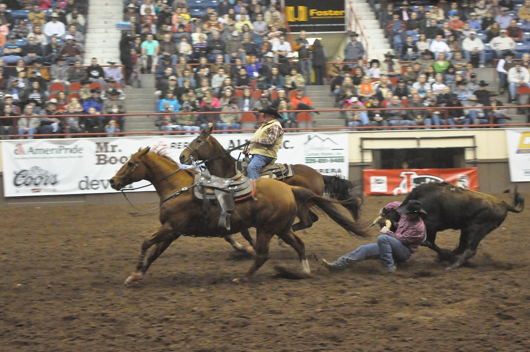 SAN ANGELO, Texas – Jack Hodges, a competitor in the San Angelo Stock Show and Rodeo tries to bring down a bull during the San Angelo Stock Show and Rodeo's Military Appreciation Night at the Foster Communication Coliseum here Feb. 26. There were several other events that night including calf roping, bareback horse riding, girl's barrel racing and more. (U.S. Air Force photo/ Airman 1st Class Breonna Veal)