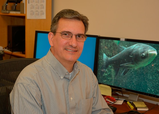 Dr. Martin Schultz, EL research environmental engineer, serves as project team leader in developing, organizing, and executing work under the Environmental DNA Calibration Study (ECALS) probabilistic modeling objective.  This research focuses on developing methods to make probabilistic statements about the potential sources of eDNA detected in monitoring samples and the presence of live fish in the Chicago Area Waterways System
