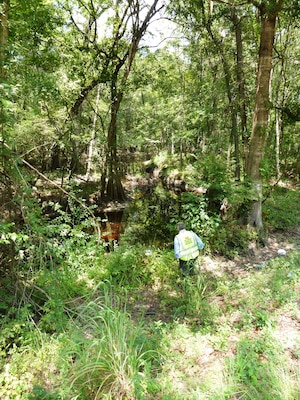 Polk Swamp falls under the Continuing Authorities Program. The area is clogged with grass and downed trees, making it hard for natural water flow and processes. The Charleston District is hoping to conduct a project like we did several years ago at Pocotaligo.