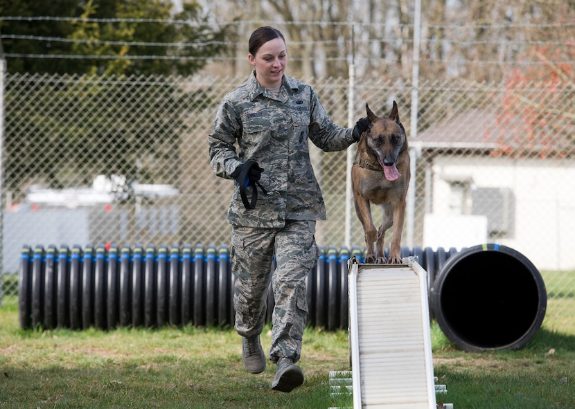 U.S. Air Force Staff Sgt. Shannon Hennessy, 52nd Security Forces Squadron military working dog handler from Colusa, Calif., runs through the obedience course with her MWD Katya at the 52nd SFS dog kennel at Spangdahlem Air Base, Germany, March 19, 2014. The obedience course is one of several training routines handlers and their K-9s perform to stay ready to deploy and perform the mission at a moment's notice. (U.S. Air Force photo by Staff Sgt. Chad Warren/Released)