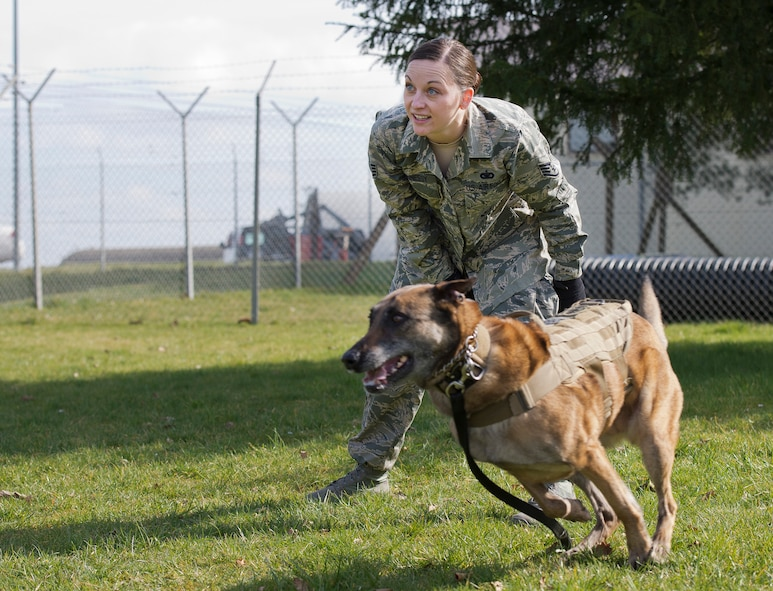 U.S. Air Force Staff Sgt. Shannon Hennessy, 52nd Security Forces Squadron military working dog handler from Colusa, Calif., releases her MWD Katya during a training session at the 52nd SFS dog kennel at Spangdahlem Air Base, Germany, March 19, 2014. Hennessy works with Katya daily on obedience, aggression and other tactics used in the line of duty. (U.S. Air Force photo by Staff Sgt. Chad Warren/Released)