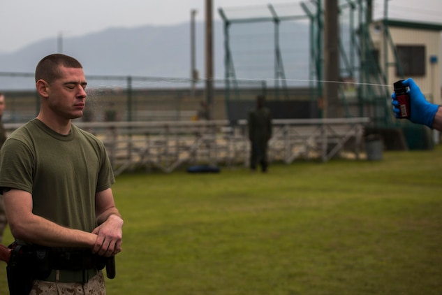 Lance Cpl. John Lynch, a military policeman with the Provost Marshal's Office, receives an Oleoresin Capsicum spray during OC training at Penny Lake Field aboard Marine Corps Air Station Iwakuni, Japan, March 20, 2014. The OC training is required for military police to carry OC spray on duty.
