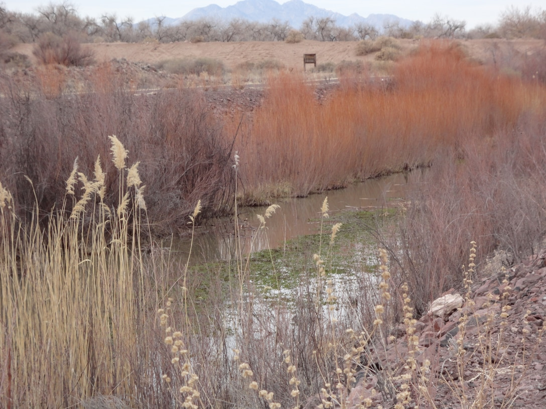SOCCORO COUNTY, N.M., -- View of an irrigation channel near the San Acacia Levee. Taken on Sept. 23, 2012. Photo by Gary Edwards.