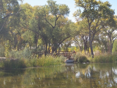 ALBUQUERQUE, N.M., -- Surveyors taking information for a newly constructed pedestrian bridge, part of the Middle Rio Grande Restoration Project Oct. 15, 2012 in the Bosque near Tingley Ponds. Photo by Jacob Chavez.