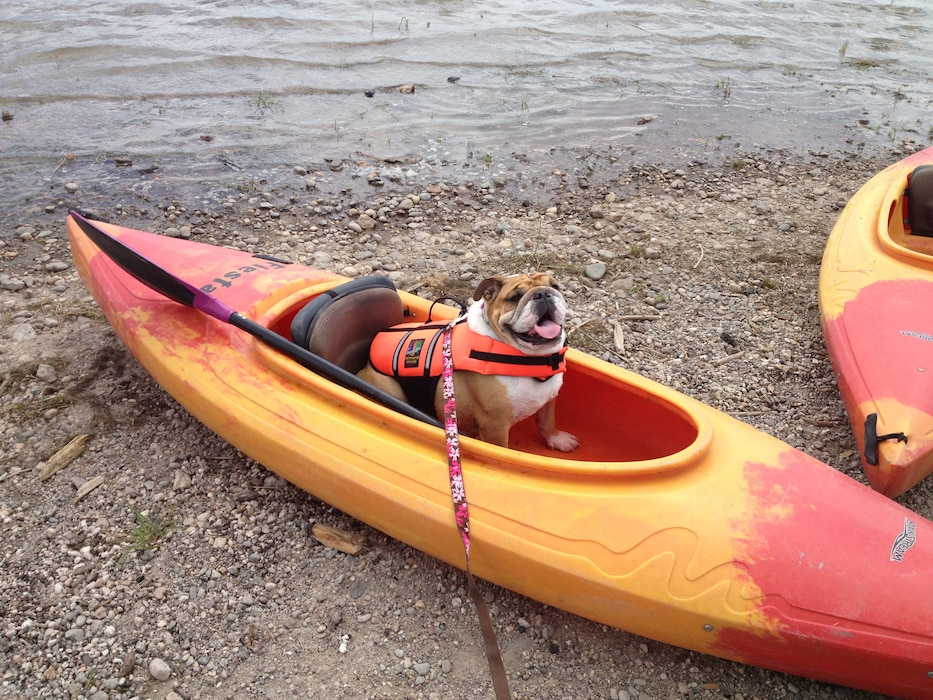 COCHITI LAKE, N.M., -- While at the District's Cochiti and Tetilla recreation areas July 22, 2012, the photographer met Lulu who loves to go kayaking.  Lulu ALWAYS wears her life jacket. Photo by Karyn Matthews.  ?