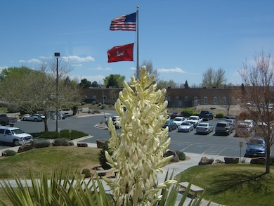 ALBUQUERQUE, N.M., -- The U.S. and U.S. Army Corps of Engineers flags fly in the spring breeze at the Albuquerque District headquarters office building.  This photo was taken from the 2nd floor of the building on April 14, 2010. Photo by Paul Rebarchik.