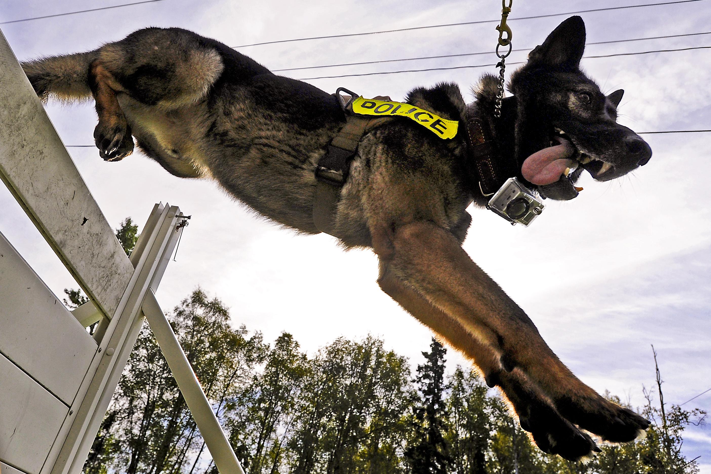 US DEPARTMENT OF DEFENSE Photos Photo Essays Essay View