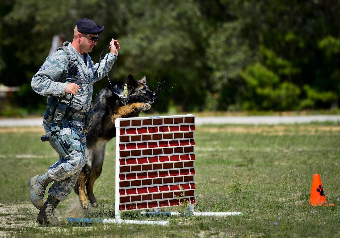 Staff Sgt. Jeffery Daum leads his military working dog, Zuzu, through an obstacle course April 12, 2104, during a demonstration at Eglin Air Force Base, Fla. Daum is a member of the 96th Security Forces Squadron. (U.S. Air Force photo/Samuel King Jr.)