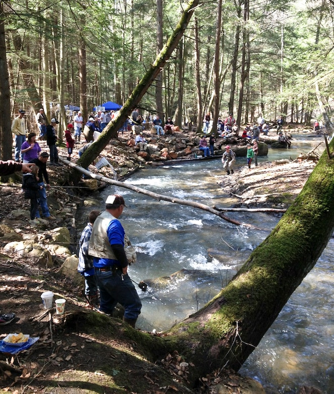 Sportsmen by the hundreds show up to local streams with hopes of catching a trout on opening day of trout season in Tionesta, Pa., at the stocked Ross Run Fish Habitat Improvement Area, Apr. 12.
