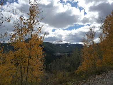 PLATORO RESERVOIR, COLO., -- Autumn Aspens with Conejos Peak in the background. Photo by John Peterson, Oct. 10, 2010.