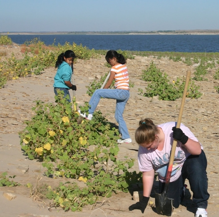 JOHN MARTIN DAM, COLO., -- Volunteers aid in removing invasive species.  Three young volunteers help clear the shoreline of John Martin Reservoir in an area that attracts endangered birds to nest in the spring. Photo by Karen Downey, Sept. 25, 2010.