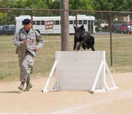 Staff Sgt. Lino Estacion and Demon complete a portion of an agility course during the Western States Police Canine Association trial at Travis Air Force Base, Calif. A total of 66 competitors participated from 29 different agencies in the trial. Estacion and Demon are with the 60th Security Forces Squadron. (U.S. Air Force photo/Senior Airman Nicole Leidholm)