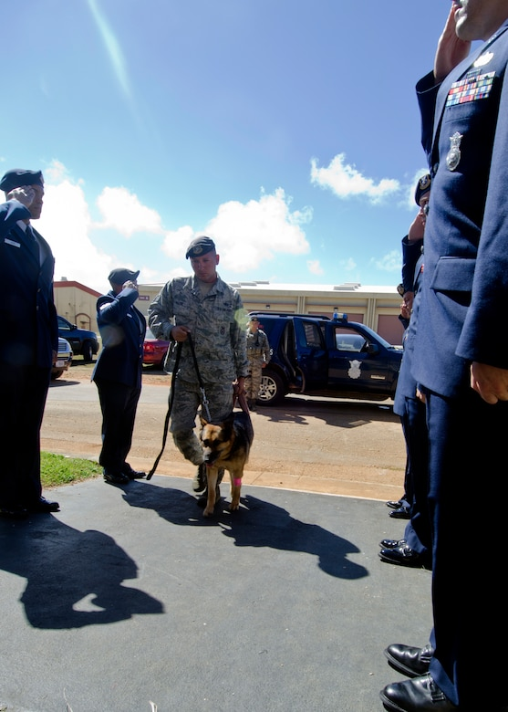 36th Security Forces Squadron military working dog handlers salute as Staff Sgt. Terry White leads Ariet, a military working dog, into the vet clinic May 15, 2014, on Andersen Air Force Base, Guam. The squadron performed military honors for Ariet before she was put to rest for medical reasons. (U.S. Air Force photo by Senior Airman Katrina M. Brisbin/Released)