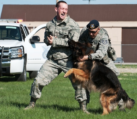 Staff Sgt. Mark Sidle (right), 28th Security Forces Squadron military working dog handler, calls off his dog, Arco, during an apprehension demonstration on a decoy, Senior Airman Jared Poe, 28th SFS military working dog handler, done as part of Spouse Appreciation Day at Ellsworth Air Force Base, S.D., May 10, 2013. Event planners are working to have similar demonstrations along with static display aircraft, food and entertainment as part of Ellsworth's Black Hills Community Appreciation Day Aug. 16, 2014. (U.S. Air Force photo by Senior Airman Alystria Maurer/Released)