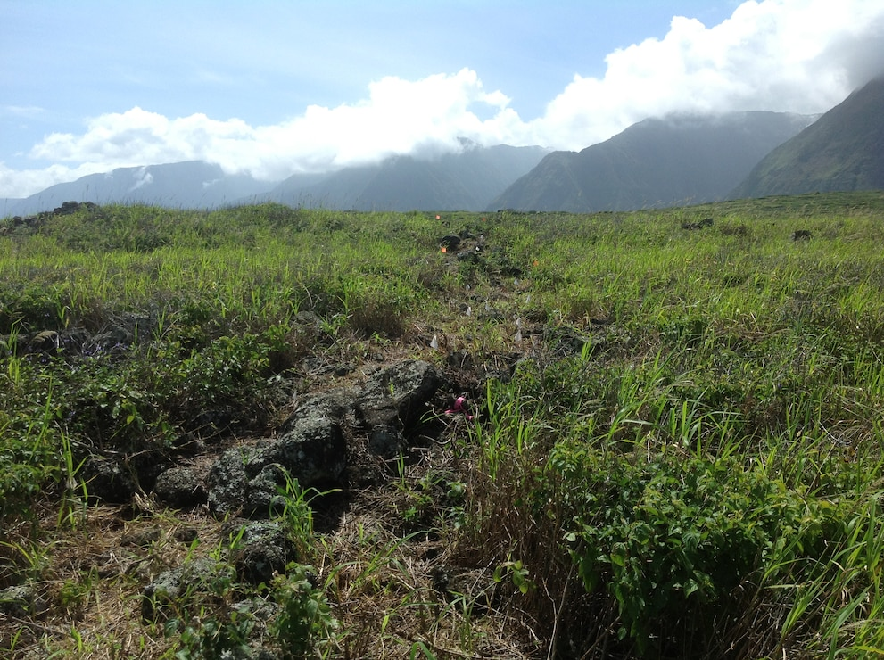 Makanalua Range