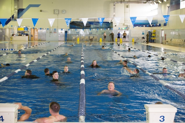 Service members with the Provost Marshal's Office participate in the Headquarters and Headquarters Squadron Marine Corps Birthday swim at the indoor pool inside IronWorks Gym aboard Marine Corps Air Station Iwakuni, Japan, Nov. 3, 2014. H&HS decided to swim 2,390 kilometers to celebrate the 239th Marine Corps birthday.