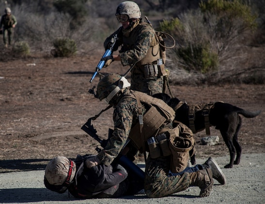 U.S. Marines with 15th Marine Expeditionary Unit, apprehend a suspect during a security element course aboard Camp Pendleton, Calif., Nov. 6, 2014. This three-week course is designed to improve the speed and accuracy of the Marines that will make up the maritime raid force's security element when the 15th MEU deploys in the spring. (U.S. Marine Corps photo by Cpl. Elize Mckelvey/Released)
